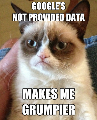 Google Not Provided Grumpy Cat