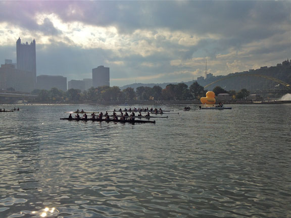 Rowers and Duck views
