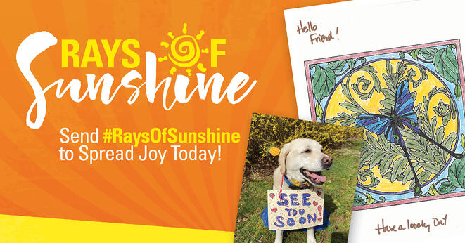 Ray_of_Sunshine_FB_NewArtwork